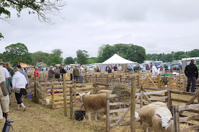 North Yorkshire County Show